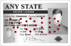 Sample Driver License VOIDed with the Perforator Machine